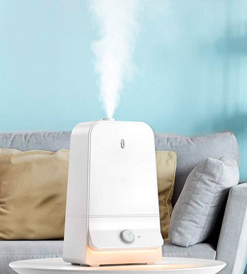 Review of TaoTronics TT-AH025 Cool Mist Humidifiers for Bedroom
