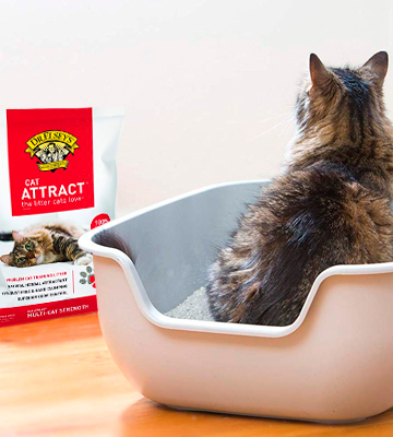 Review of Dr. Elsey's Cat Attract Scoopable Cat Litter