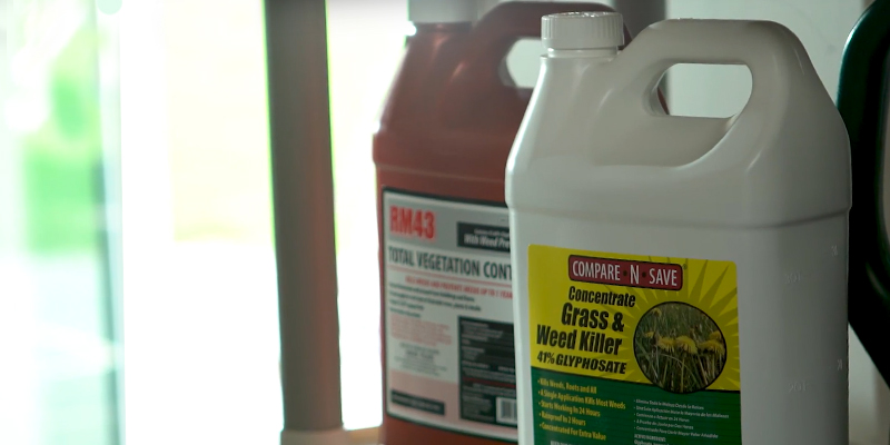 Review of Compare-N-Save 75324 Concentrate Grass and Weed Killer 1GAL