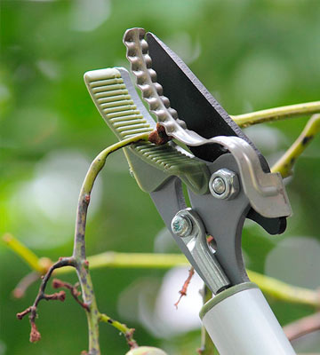 Review of Worth Long Reach Pruner