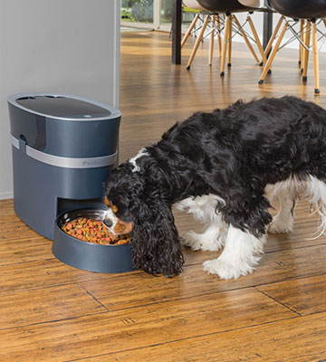 Review of PetSafe PFD00-15788 Automatic pet feeder