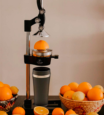 Review of Zulay Extra Tall Stand Juicer Manual Juice Squeezer