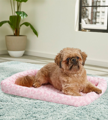 Review of MidWest Homes for Pets Bolster Pet Bed