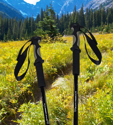 Review of BAFX Products Anti Shock Hiking Trekking Poles