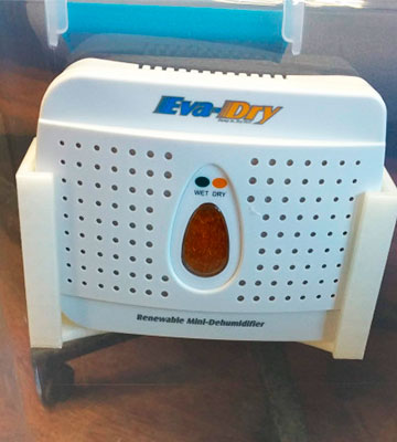 Review of Eva-dry E-333 Rechargeable Dehumidifier