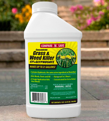 Review of Compare-N-Save 75323 Concentrate Grass and Weed Killer 32-Ounce