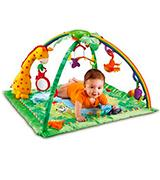 Fisher-Price K4562 Rainforest Melodies and Lights Deluxe Gym