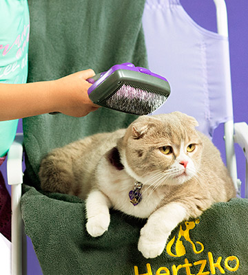 Review of Hertzko All Sizes Hair Cats Grooming Brush
