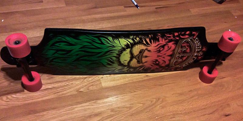 Santa Cruz Lion God Rasta Cruzer Freeride Longboard in the use