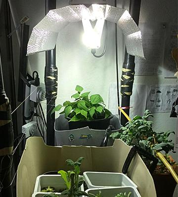 Review of Apollo Horticulture GLK1000GW19 Grow Light