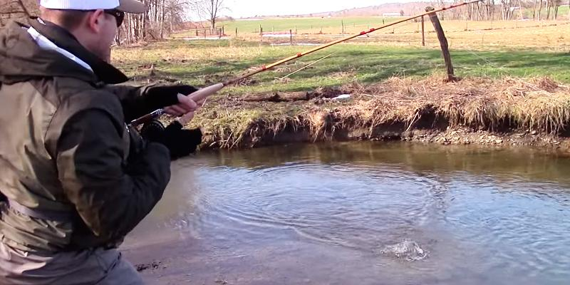 Detailed review of Eagle Claw Featherlight 3/4 Line Weight Fly Rod