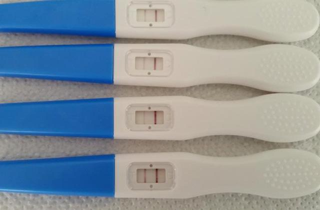 Best Ovulation Tests