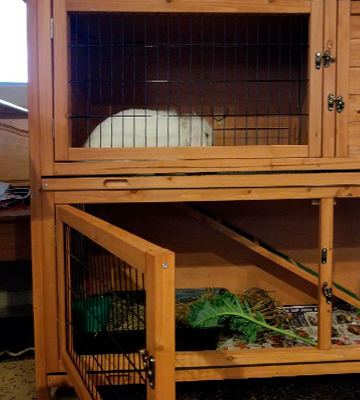 Review of Good Life USA Hutch Rabbit Cage Two Floors Wooden Outdoor Indoor Bunny
