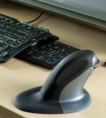 Review of Posturite 9820100 Penguin Ambidextrous Vertical Mouse Wired Medium