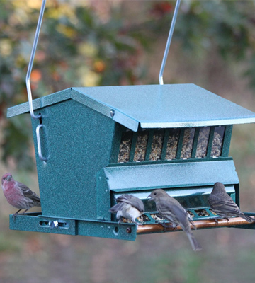 Review of Heritage Farms 7533 Woodlink Absolute Squirrel Resistant Bird Feeder