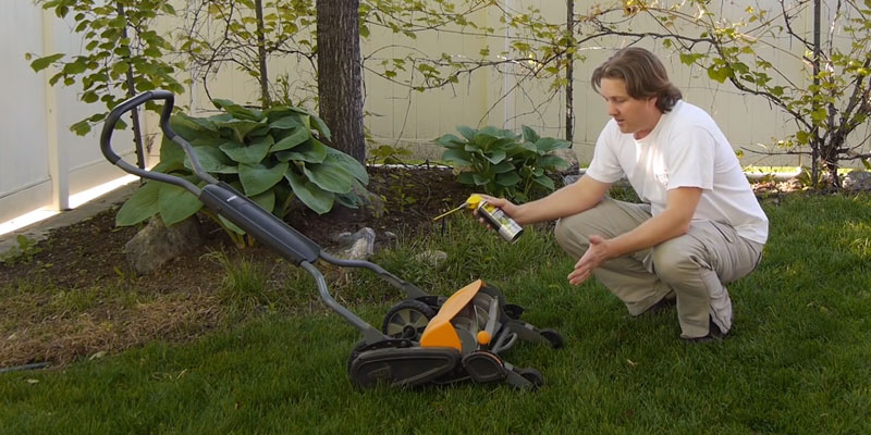 Detailed review of Fiskars 362050-1001 StaySharp Max Reel Mower