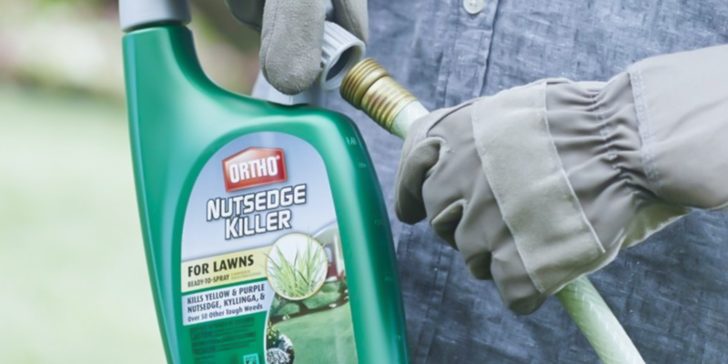 Review of Ortho 9901910 Nutsedge Ready-To-Spray Killer, 32-Ounce