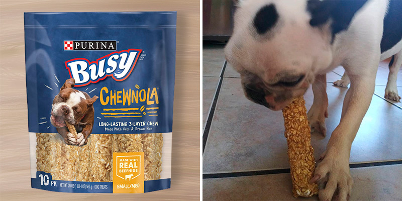 Review of Purina Busy Real Beefhide Dog Chews