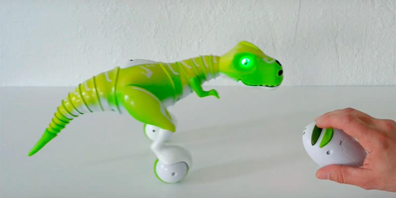 Zoomer Dino Remote Control Robot in the use
