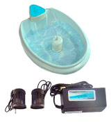 Better Health Company Regain Health & Vitality Detox Foot Spa Machine