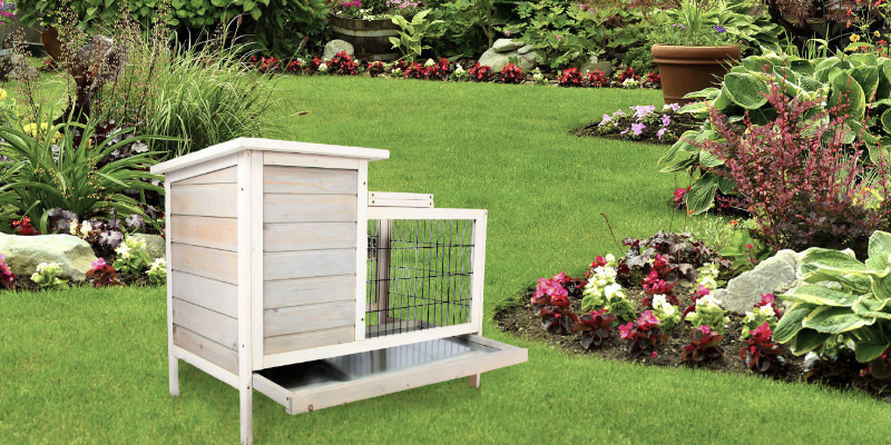 Review of Scurrty Outdoor/Indoor Wooden Rabbit Hutch
