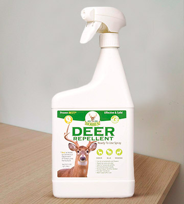Review of Bobbex B550110 32 oz Deer Repellent Ready To Use Spray