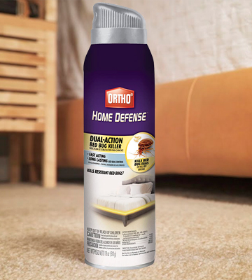 Review of Ortho Home Defense Dual-Action Bed Bug Killer Aerosol