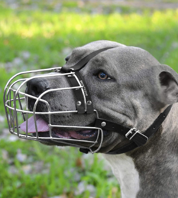 Review of BRONZEDOG Metal Mask Dog Muzzle for Large Dogs