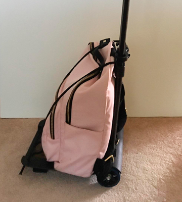 Review of BlueJan A-1 Luggage Cart