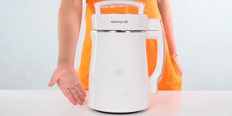 Detailed review of Joyoung DJ13U-D08SG Soy Milk Maker