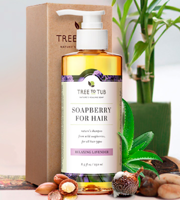 Review of Tree to Tub SOAPBERRY FOR HAIR Shampoo for Dry Hair and Scalp