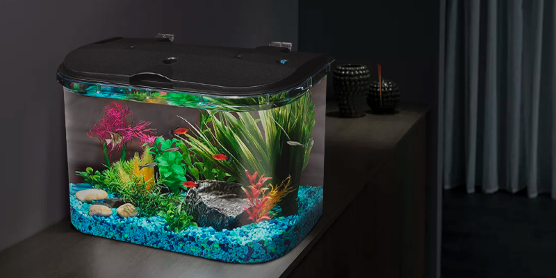 Review of Koller Products AQ15005 5 Gallon Aquarium Kit