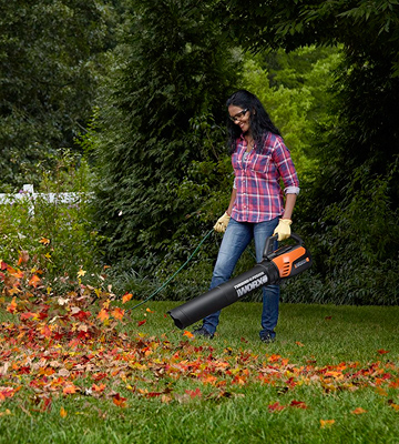 Review of WORX WG510 Turbine Fusion Leaf Blower, Mulcher, and Vacuum