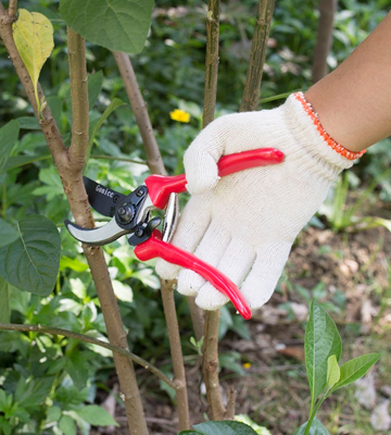 Review of Gonicc FBA_GPPS-1002 Professional Sharp Bypass Pruning Shears
