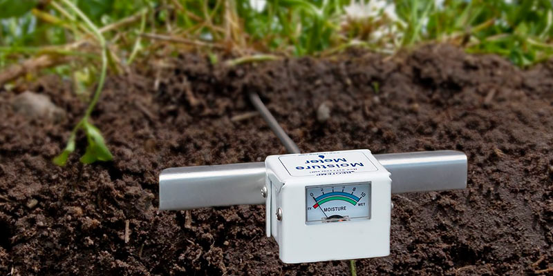Review of REOTEMP Moisture Meter Garden and Compost (15 Inch Stem), Garden Tool Ideal for Soil, Plant, Farm and Lawn Moisture Testing
