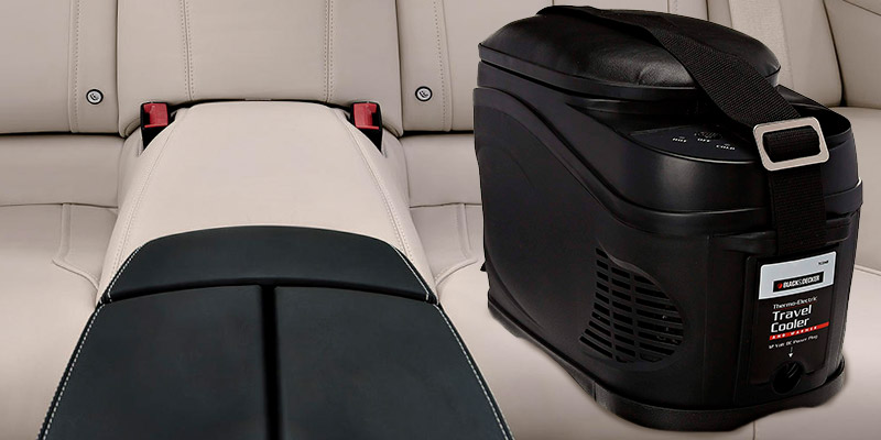 Review of BLACK&DECKER Travel Cooler & Warmer Bag