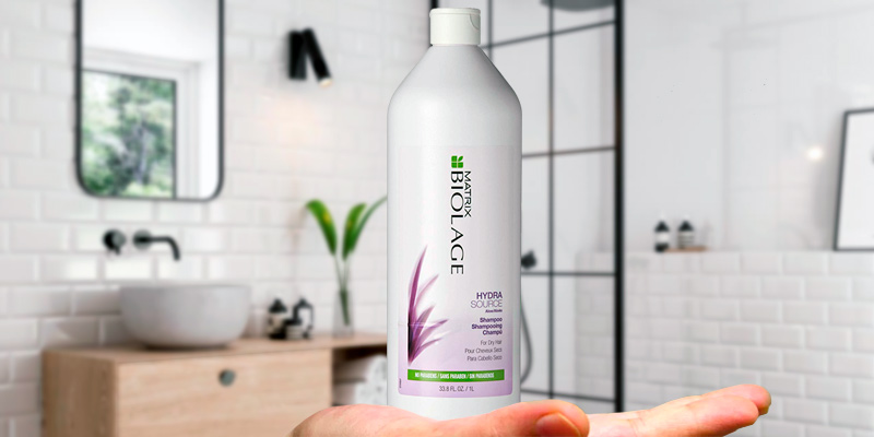 Review of BIOLAGE Hydrasource Shampoo For Dry Hair