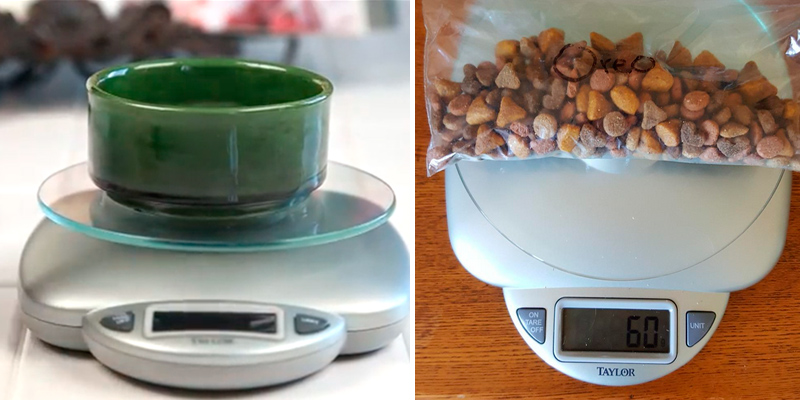 Taylor Precision Products 3842 Digital Food Scale in the use