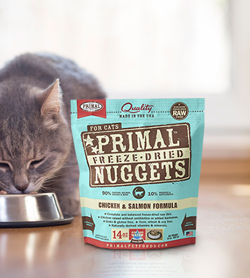 Review of Primal Pet Foods Raw Freeze Dried Cat Diet