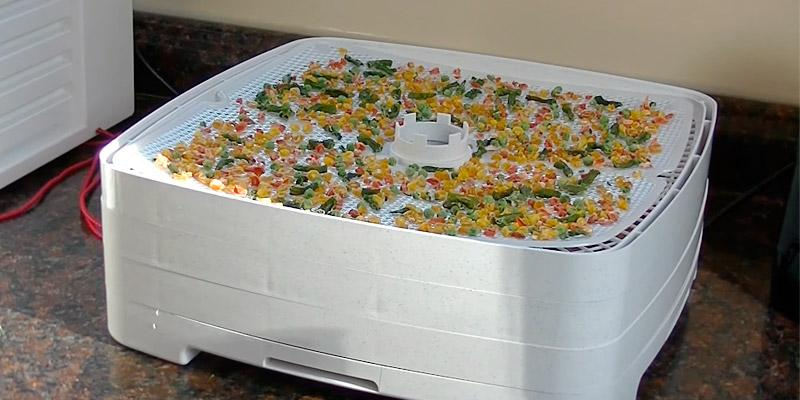 Nesco FD-80 Square-Shaped Dehydrator, 4 Tray in the use