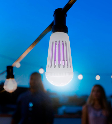 5 Best Bug Zapper Bulbs Reviews Of 2019 Bestadvisor Com