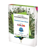 Hammermill 300-Pack Premium Laser Gloss Copy Paper for Photo Printing