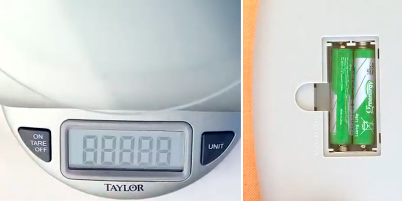 Detailed review of Taylor Precision Products 3842 Digital Food Scale