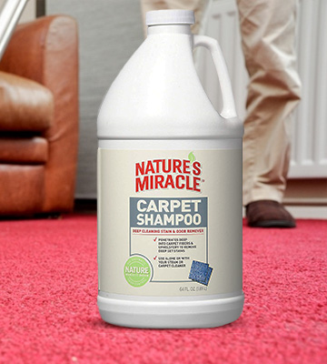 Review of Nature's Miracle P5554 Deep Cleaning Carpet Shampoo