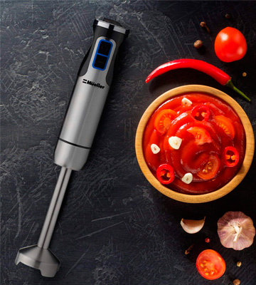 Review of Mueller Austria 1 001 Ultra-Stick Immersion Multi-Purpose Hand Blender