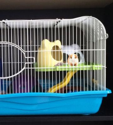 Review of Prevue Pet Products SP2005BL Hamster Haven