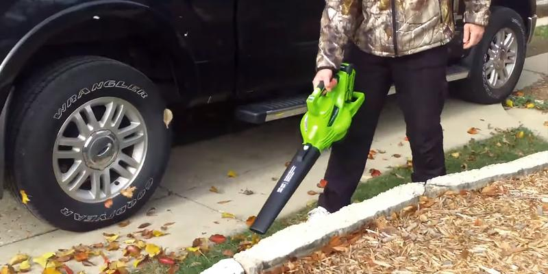 GreenWorks 24322 Cordless Leaf Blower & Vacuum, 4Ah Battery and Charger Included in the use