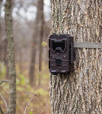 Review of Bushnell Wireless Trail Camera