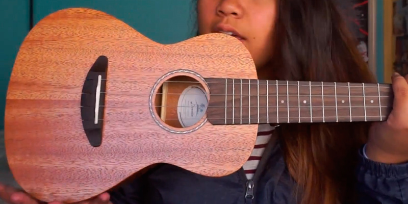 Review of Donner Concert Mahogany DUC-1 Ukulele