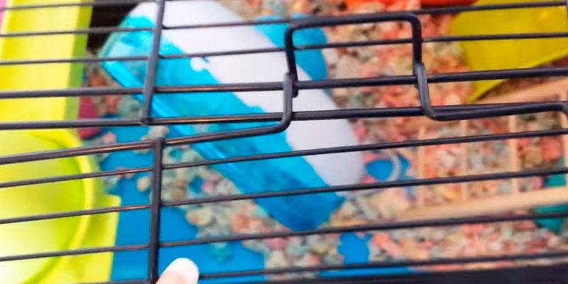 5 Best Hamster Cages, Houses and Habitats Reviews of 2019